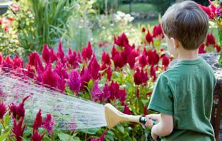Getting your Kids into Gardening